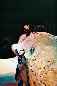 Die Gezeichneten, Salzburger Festspiele